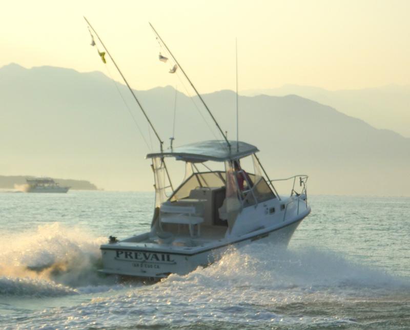 Sports fishing Puerto Vallarta